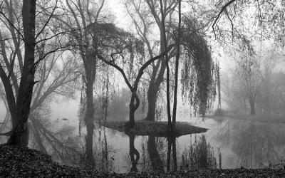 L'étang Chabaud-Latour 3