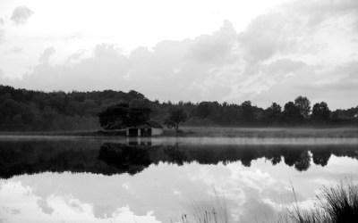 Soirée d'été au bord de l'eau