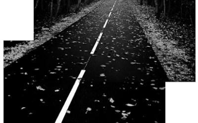 La (vélo) route