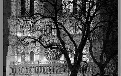 Notre Dame, la nuit…