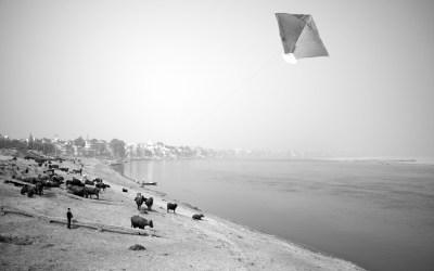 Cerfs-volants # 02