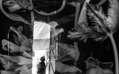 Paradis: la porte fleurie.