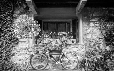 Roues fleuries
