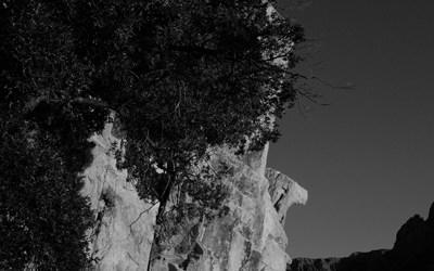 La Corse en noir et blanc. Il a les cheveux frisés.