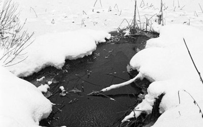 Lac de Remoray gelé 6/7