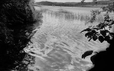 La paix du lac