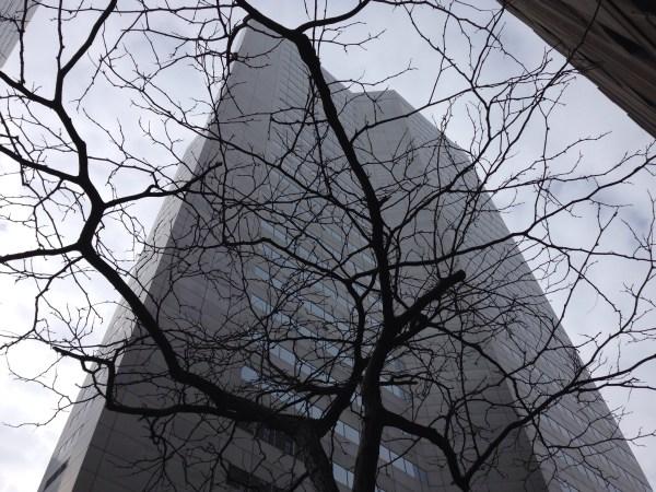 Le centre ville de Montréal