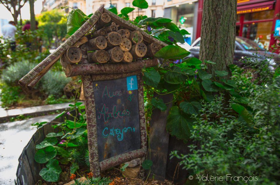 Le collectif «Aux arbres citoyens» végétalise Paris