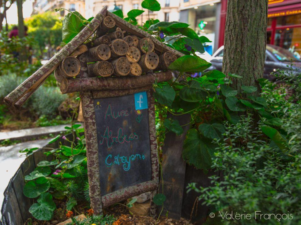 """Le jardin du collectif """"Aux arbres citoyens"""""""