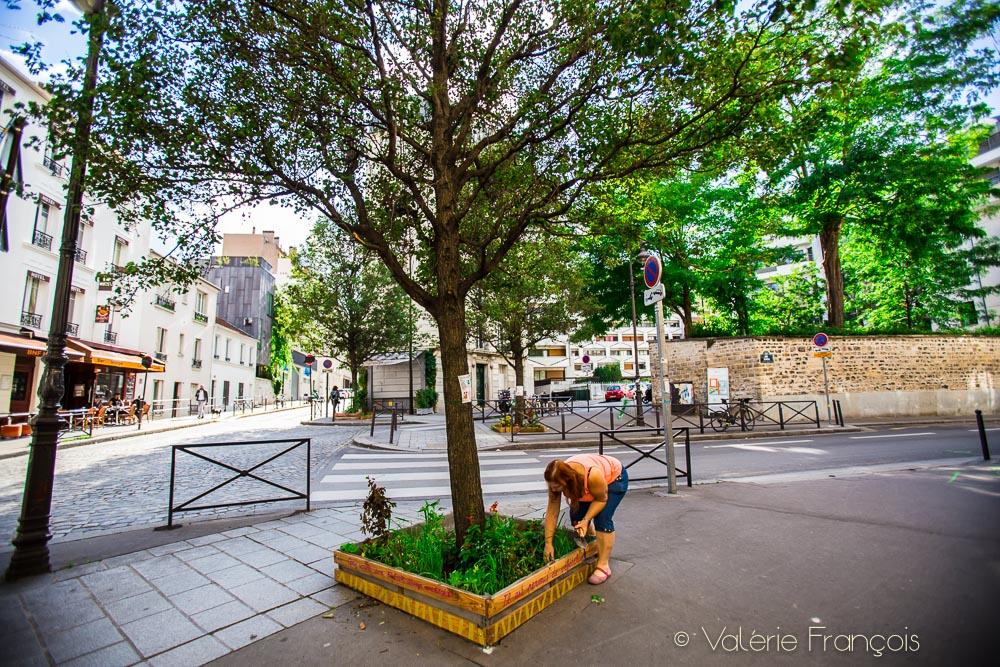 Carole végétalise un pied d'arbre dans le 12ème arrondissement de Paris