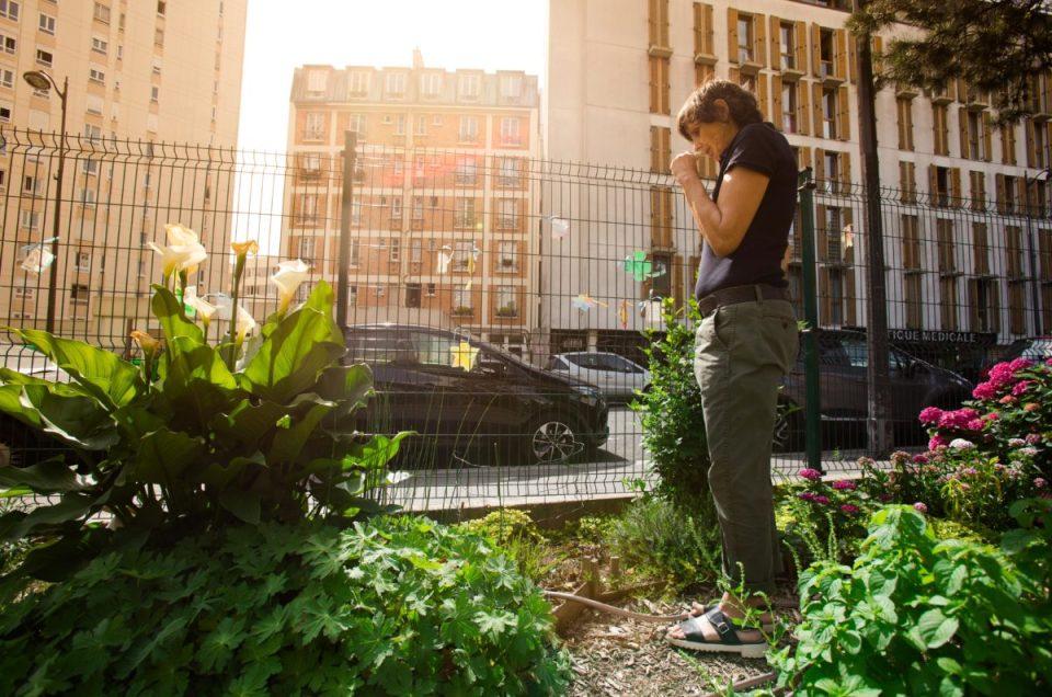 Le jardin d'Eugénie : un jardin associatif au cœur du XIXème