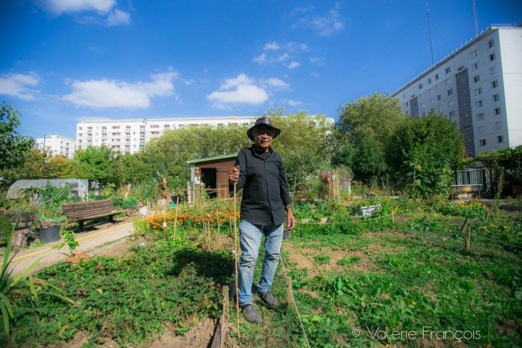 Il y a une cinquantaine de jardiniers. Chacun à une parcelle de 10 ou 20 M2. Nous avons aussi une parcelle commune où tout le monde peut y planter quelque chose.