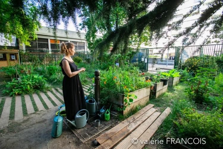 Le jardin partagé de la baleine verte