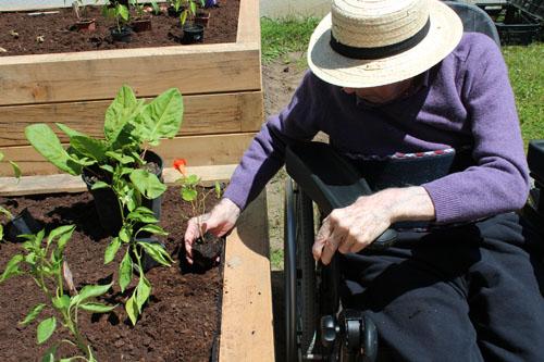 Jardiner est bon pour la mémoire. C'est pourquoi l'hortithérapie est préconisée pour les patients atteints de la maladie d'Alzheimer.