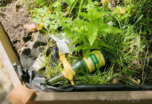 Bouteilles, mégots, papiers... les gens jettent tout et n'importe quoi aux pieds des arbres