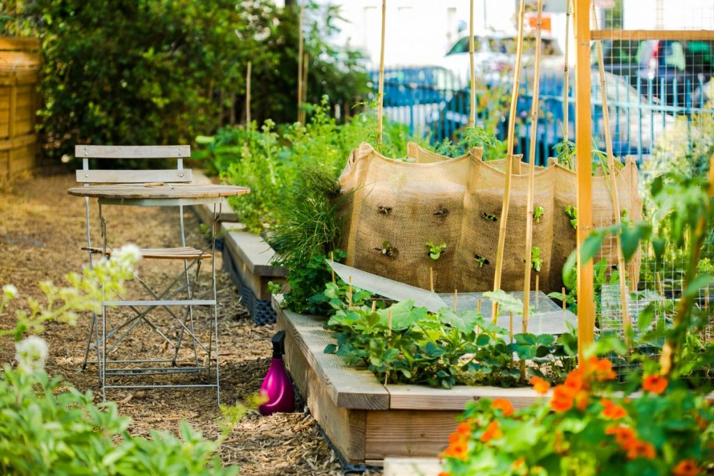 Le jardin partagé des oursons - square Saint-LambertLe jardin partagé des oursons - square Saint-Lambert