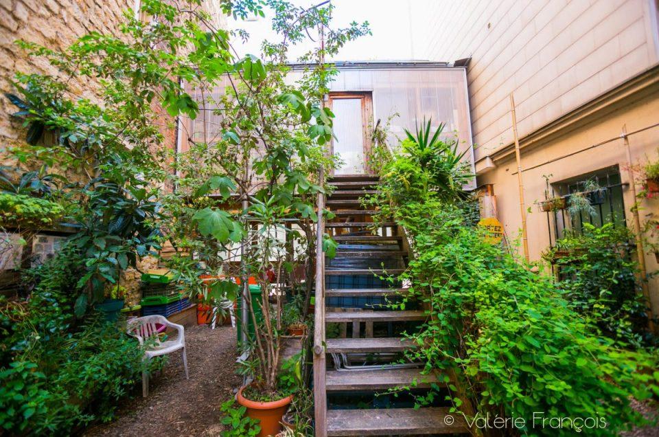 Envie de nature à Paris ? Perdez-vous dans le 20ème