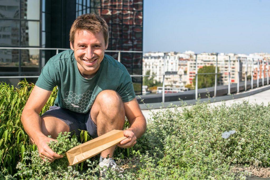 Maraîchage urbain, le toit des saveurs chez Wesh Grow