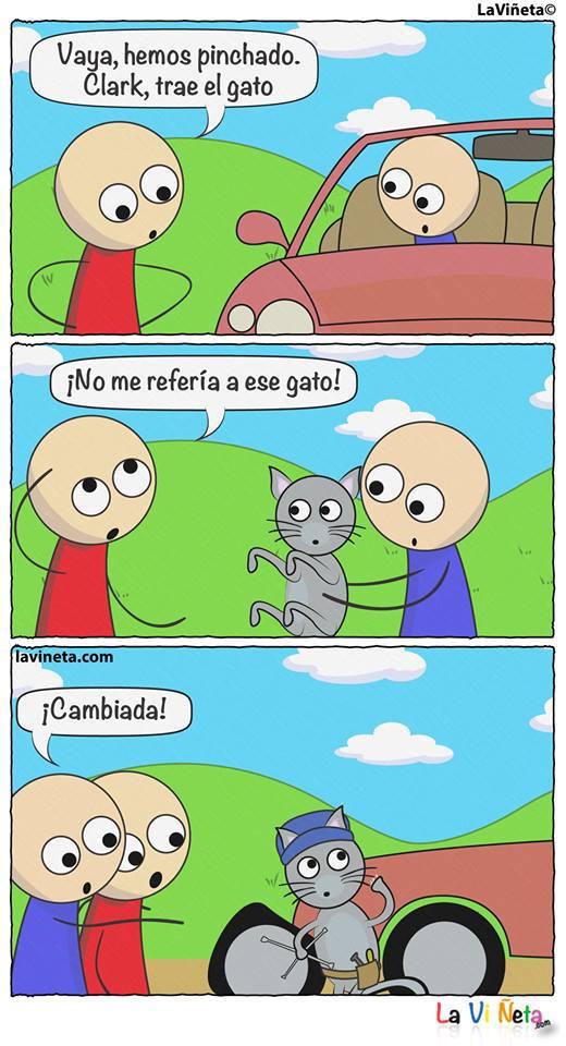 el-gato