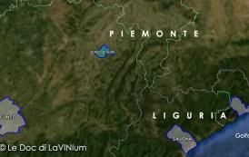 Le Docg del Piemonte: Dolcetto di Diano d'Alba o Diano d'Alba