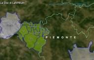 Le Doc del Piemonte: Freisa di Chieri