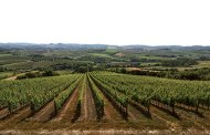 Badia di Morrona: tra Toscana e Piemonte