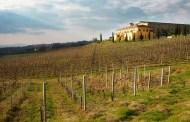 Tenuta Santa Lucia, tra vino e olio un simbolo di qualità nella Sabina