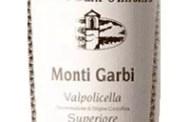 Valpolicella Superiore Monti Garbi 2001