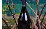 Friuli Colli Orientali Chardonnay 2011