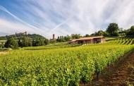 Azienda Agricola Finigeto: il sogno realizzato di trasformare la terra in vino