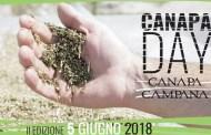 A tutta Canapa, ritorna a Caivano il Canapa Day