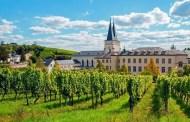 Rüdesheim Pinot Noir S trocken 2012 Bischöfliches Weingut Rüdesheim