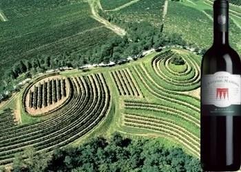 Malvasia dei Colli Orientali del Friuli 2013 del Conte d'Attimis - Maniago