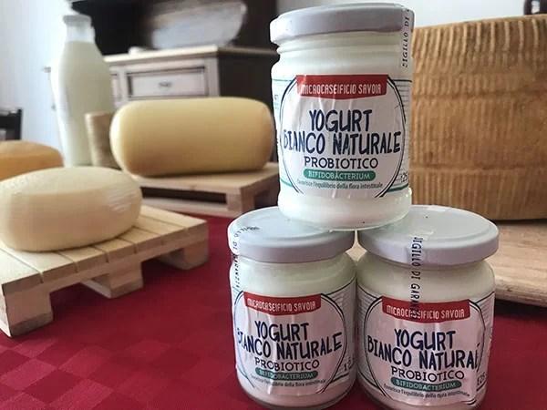Yogurt bianco probiotico