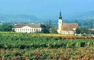 Vintage Sekt 2004 Schloss Gobelsburg