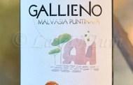 Gallieno Malvasia Puntinata 2017