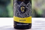 Produttori, un vino al giorno: Sicilia Ganimede 2016 - Tenuta Cuffaro