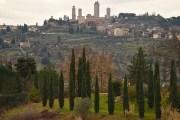 Anteprima Vernaccia di San Gimignano 2019: riflessioni su 84 campioni di diverse annate