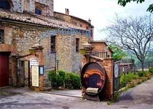 Azienda vinicola Gattavecchi