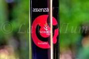 Produttori, un vino al giorno: Sannio Barbera Barbetta Assenza 2017 - Antica Masseria Venditti