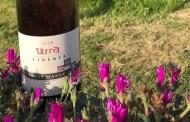 Terra Libertà, il vino rosato di Walter Massa: un altro equilibrio sopra la follia