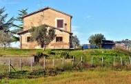 Poggio Baranèllo: due giovani donne, il vino e Montefiascone