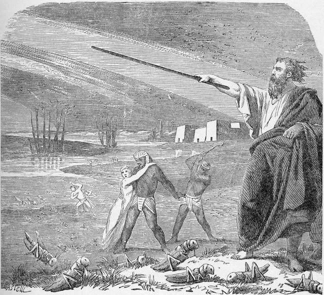 The Plague of Locust Exodus 10:12