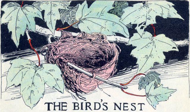 The Birds have Nests Matthew 8:20
