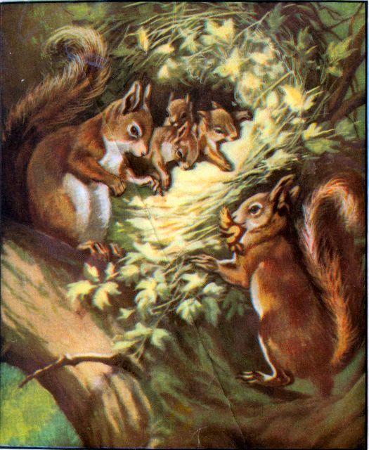 God Formed Every Beast Genesis 2:19