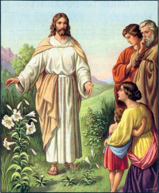 God clothes the lilies of the field Matthew 6:28-30