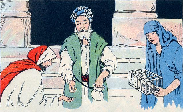 Buying a Sacrifice of Turtledoves Luke 2:22-24