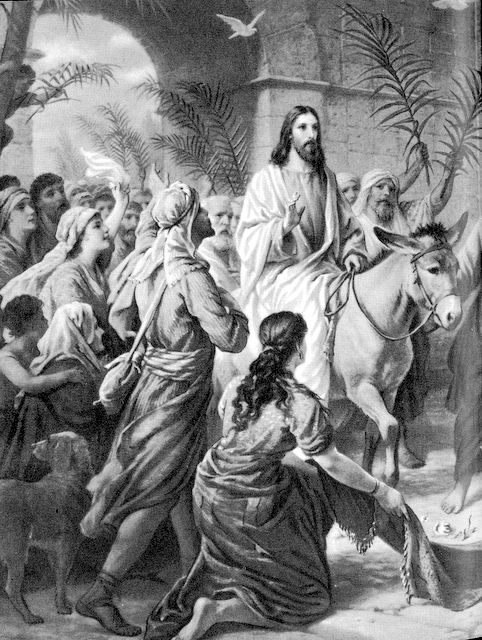 Jesus enters Jerusalem on a donkey Matthew 21:7-10