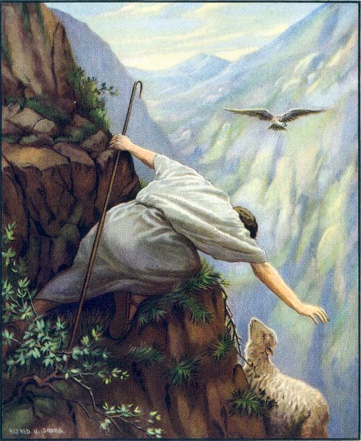 Seeking the Lost Sheep in the Mountains Matthew 18:12