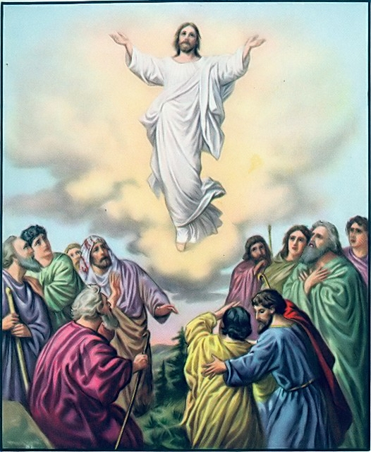 The disciples watch as Jesus ascends into heaven Acts 1:9